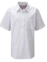 Shirts and Blouses (Short Sleeved)