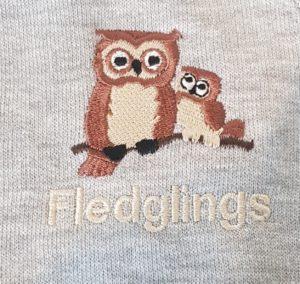 Woodfield Fledglings Nursery